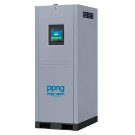 Generador de nitrógeno PPNG 6 - 68 S Pneumatech